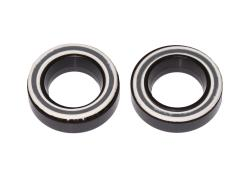 Fulcrum Bearing set RS-100